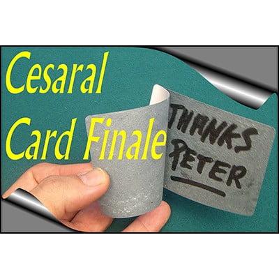 Cesaral Kart Finali